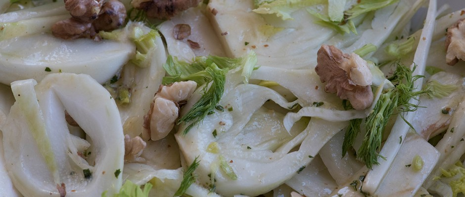 fresh fennel and chicory salad