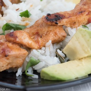 Coconut Marinated Grilled Chicken Skewers