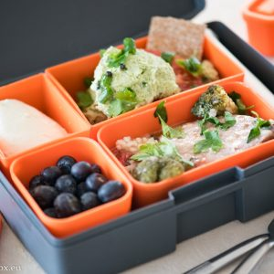 Lunchbox Exotic